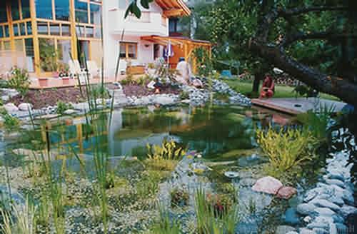 raschpichler - gartenprofi: gartenteiche, Hause und Garten
